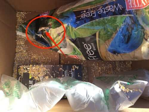 amazon bird seed food slashed in box bad packaging