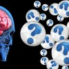 Is The Internet Changing Our Brains?