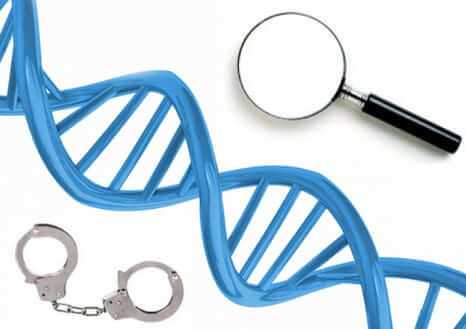 dna privacy familial searches 23andme ancestry.com