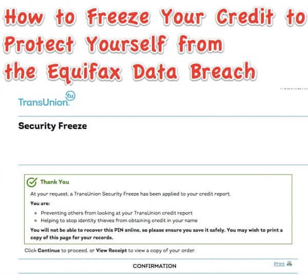 freeze credit protect self equifax data breach
