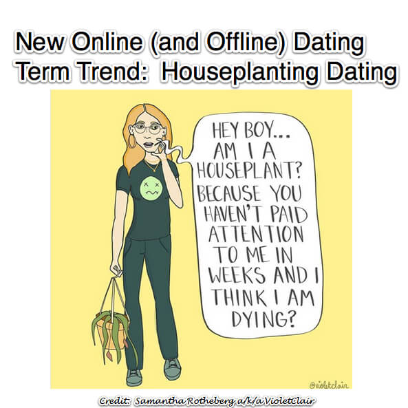 houseplant dating houseplanting date