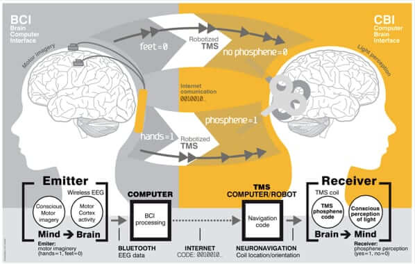 how brain to brain communication works