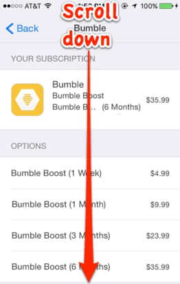 how to cancel bumble boost premium subscription