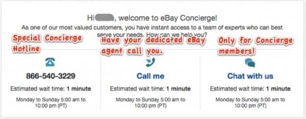 how to use ebay concierge services-1