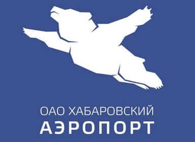 russian airport flying bear logo bearport
